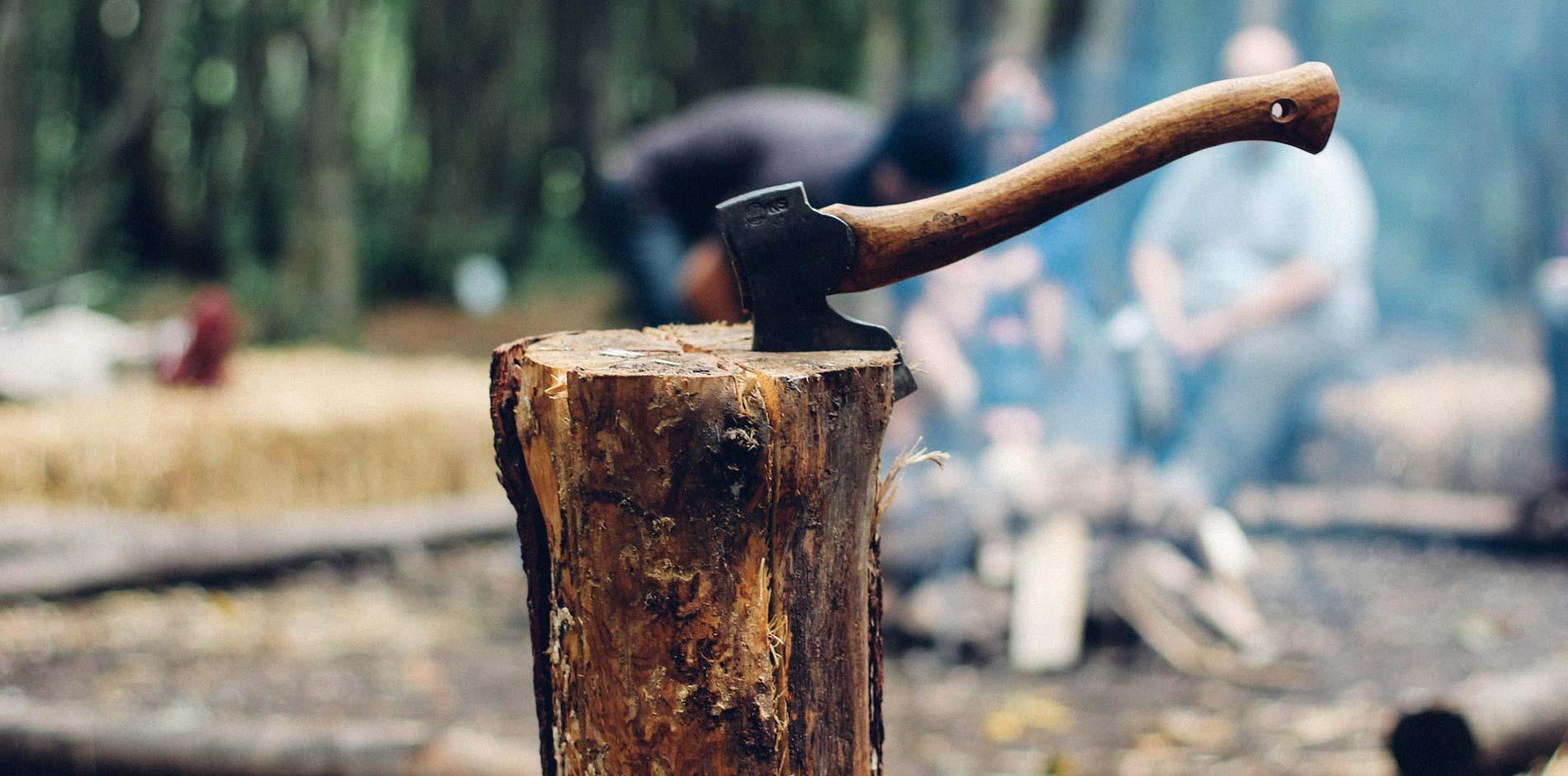 bushcraft: leven en leren van de natuur
