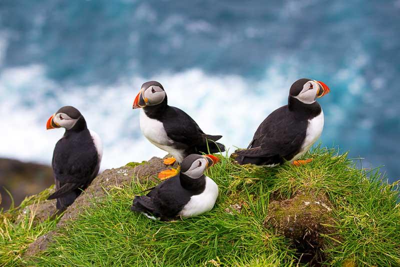 Rondreis Faroer Eilanden